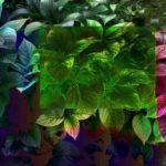Волшебная листва
