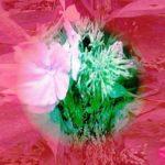Цветочный взрыв